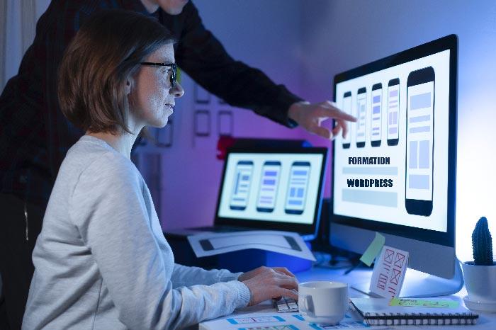 Formation wordpress en création de site internet en ligne